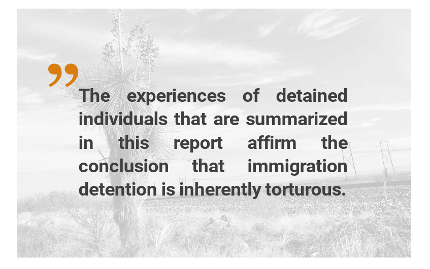 Quote about immigration detention being inherently torturous with desert landscape in background.