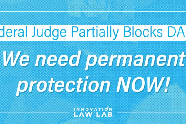 """Blue image with white text reading """"Federal Judge Partially Blocks DACA, We need permanent protection NOW!"""""""